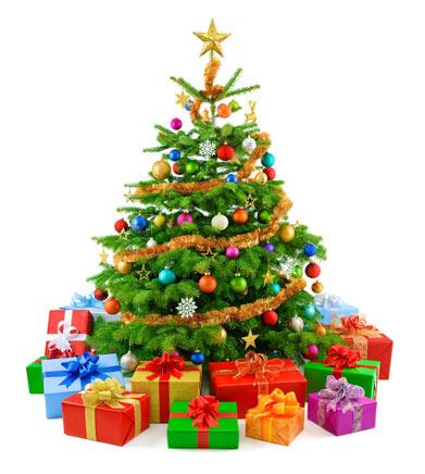 Gutschein Weihnachtsbaum.Angebot Www Heilpraxis Santjer De Page 2